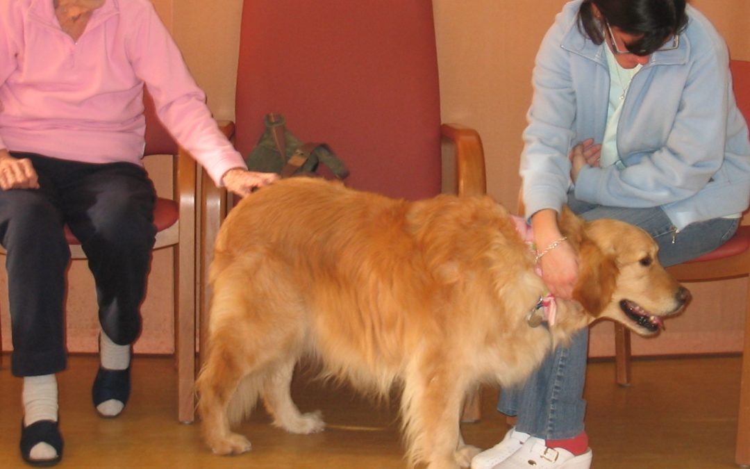 Pet therapy in una casa di riposo